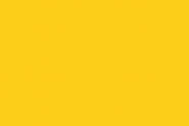 Fondo Amarillo - La nueva Bagatela