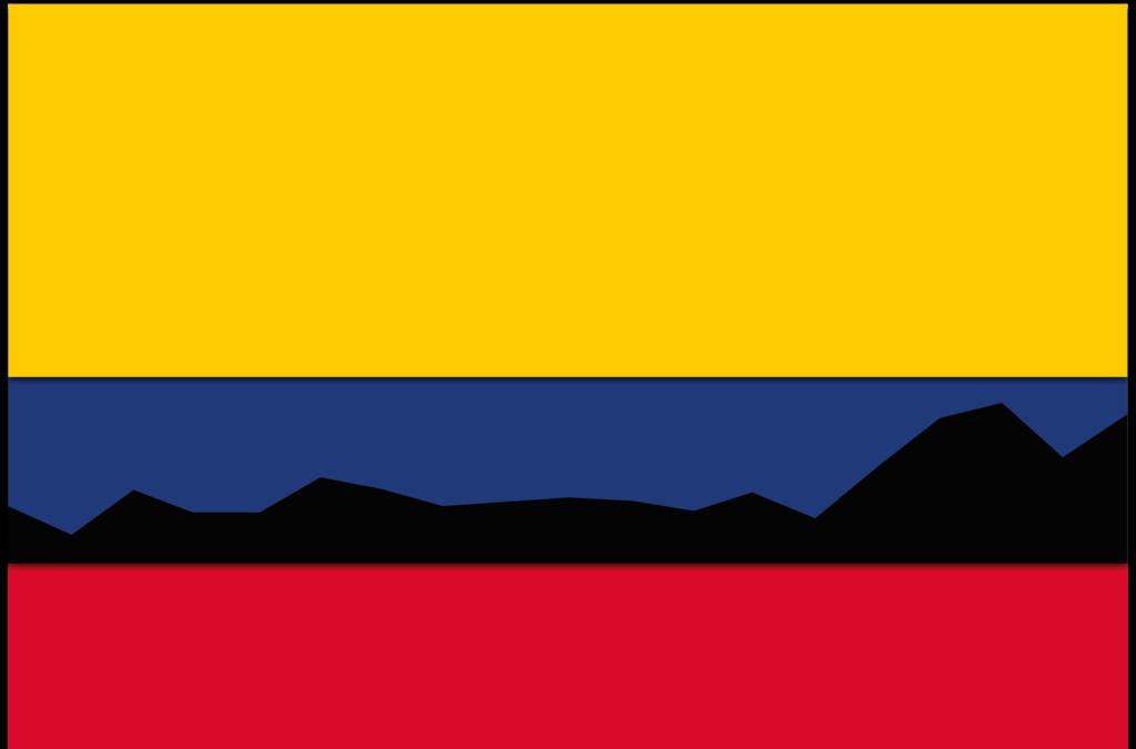 Juan Naar - Deforestación (2002-2020), 2021